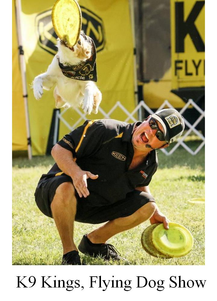 K9 Kings, Flying Dog Show